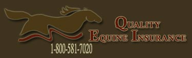 Quality Equine Insurance - Farm Insurance